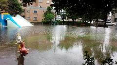 大雨で、公園が…